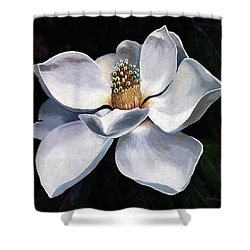 Shower Curtain featuring the painting Lovely In White - Painting Magnolia Flower  by Linda Apple