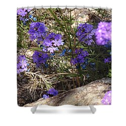 Lovely Lavender Shower Curtain