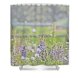 Shower Curtain featuring the photograph Lovely Montana Wildflowers by Jennie Marie Schell