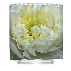 Shower Curtain featuring the photograph Lovely Peony by Sandy Keeton