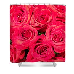 Shower Curtain featuring the photograph Lovely Roses by Alohi Fujimoto
