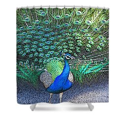 Lovely To Look At  Shower Curtain