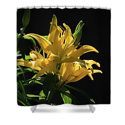 Lover's Lilly Shower Curtain