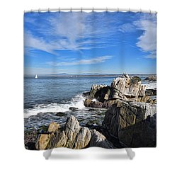 Lovers Point Park Shower Curtain by Gina Savage