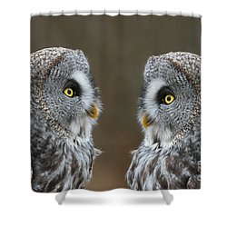 Lovers Rendezvous Shower Curtain