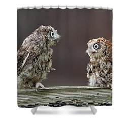 Lover's Spat Shower Curtain