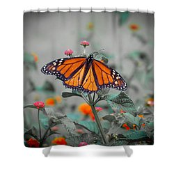 Loving The Lantana  Shower Curtain