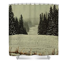 Low Ceiling Shower Curtain
