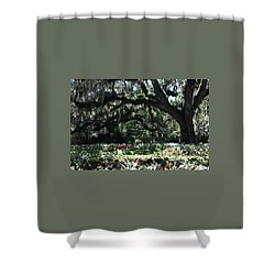 Shower Curtain featuring the photograph Low Country Series I by Suzanne Gaff