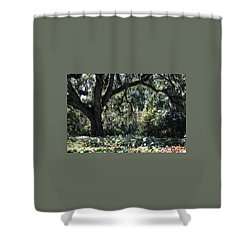 Shower Curtain featuring the photograph Low Country Series II by Suzanne Gaff