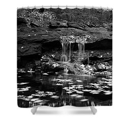Low Falls Shower Curtain