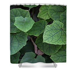 Low Key Green Vines Shower Curtain