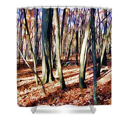 Shower Curtain featuring the photograph November Light by Betsy Zimmerli