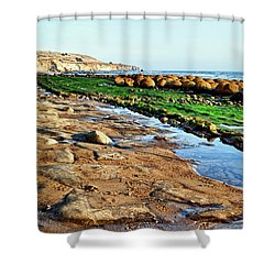 Low Tide At Bowling Ball Beach Shower Curtain