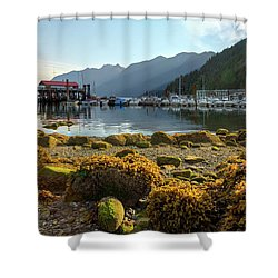 Low Tide At Horseshoe Bay Canada Shower Curtain by David Gn