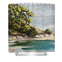 Low Tide Beach Shower Curtain