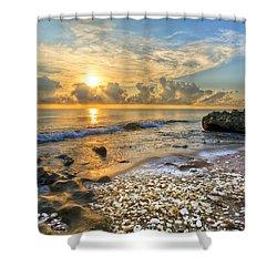 Low Tide Shower Curtain by Debra and Dave Vanderlaan