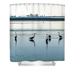Shower Curtain featuring the photograph Low Tide Gathering by Steven Sparks
