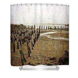 Low Tide Oregon Coast 2.0 Shower Curtain