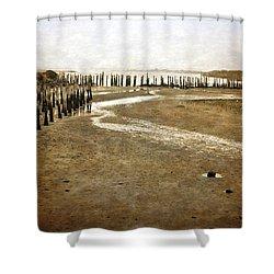 Low Tide Oregon Coast  Shower Curtain