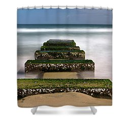 Low Tide Reveal Shower Curtain