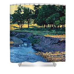 Low Water Morning Shower Curtain by Bruce Morrison