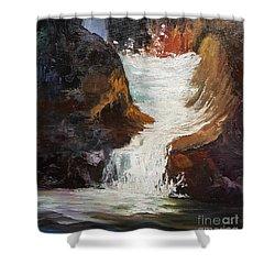 Lower Chasm Waterfall Shower Curtain