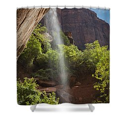 Lower Emerald Pool Falls In Zion Shower Curtain