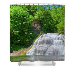 Shower Curtain featuring the photograph Lower Falls 0485 by Guy Whiteley