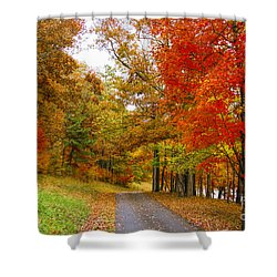 Lower Lake Loop Trail Shower Curtain