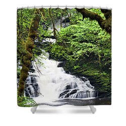 Lower Lunch Creek Falls Shower Curtain