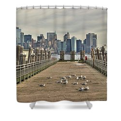 Lower Manhattan Shower Curtain by Timothy Lowry