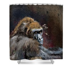 Lowland Gorilla Shower Curtain