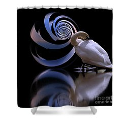 Loxodrome And Swan Shower Curtain