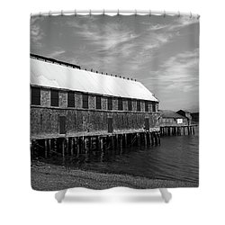 Lubec, Maine Shower Curtain by Trace Kittrell