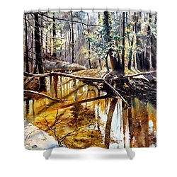 Shower Curtain featuring the painting  Lubianka-2-river by Henryk Gorecki