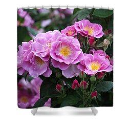 Lucky Floribunda Roses Shower Curtain