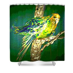 Lucky Louie Shower Curtain