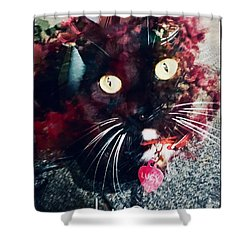 Lucy The Cat Shower Curtain