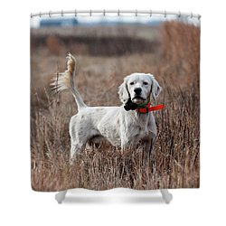 Shower Curtain featuring the photograph Luke - D010076 by Daniel Dempster