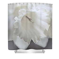 Shower Curtain featuring the photograph Luminous Ivory Daffodil Flower by Jennie Marie Schell