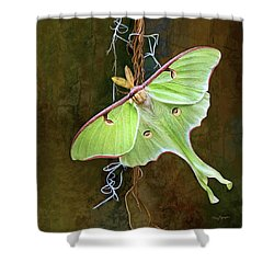 Luna Moth Shower Curtain by Thanh Thuy Nguyen