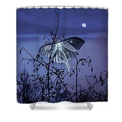 Luna Nights Shower Curtain
