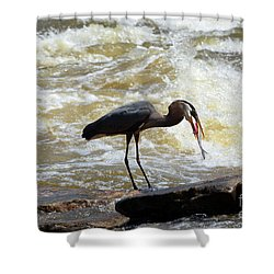 Lunch In The James River 11 Shower Curtain