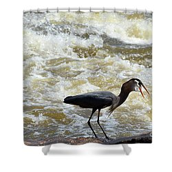 Lunch In The James River 13 Shower Curtain