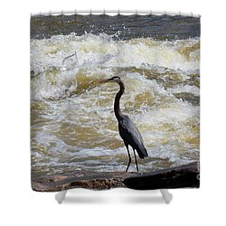 Lunch In The James River 2 Shower Curtain