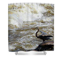 Lunch In The James River 4 Shower Curtain
