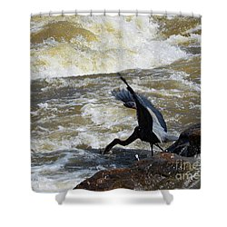 Lunch In The James River 6 Shower Curtain