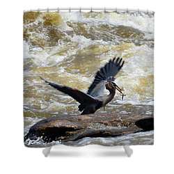 Lunch In The James River 7 Shower Curtain