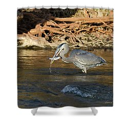 Shower Curtain featuring the photograph Lunch On The Neuse River by George Randy Bass